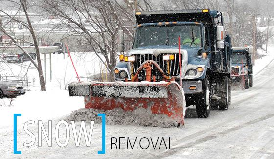 SnowRemoval-Community Resources