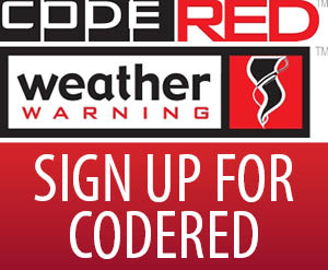 codered sign up button